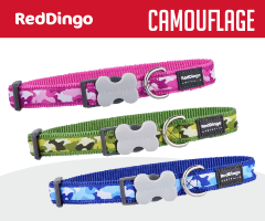 Red Dingo Camouflage