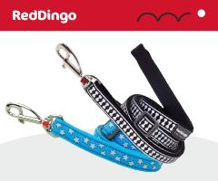 Red Dingo Laisse pour chien
