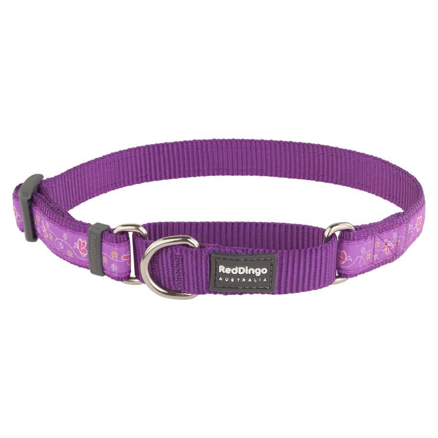 Purple Butterflies Collar /& Lead