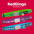 Red Dingo Collier pour chat