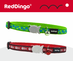Red Dingo Collare per gatti
