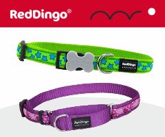 Red Dingo dog collar
