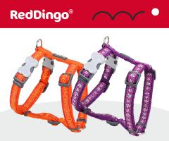 Red Dingo dog harness