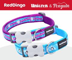Red Dingo Penguin Unicorn