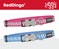 Red Dingo Reflective Ziggy