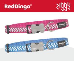 Red Dingo Reflective Ziggy