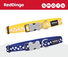 Red Dingo Spots