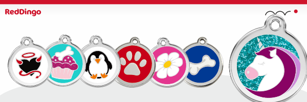 Red Dingo Médaille, reddingo Médaille