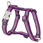 Red Dingo Reflective Purple Medium Dog Harness