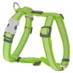 Red Dingo Daisy Chain Lime XLarge Dog Harness