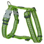 Red Dingo Reflective Lime XLarge Dog Harness
