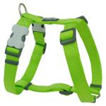 Red Dingo Lime Large Dog Harness
