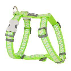 Red Dingo Reflective Ziggy Lime Large Dog Harness