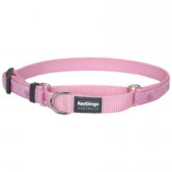 Red Dingo Breezy Love Pink Small Martingale Collar