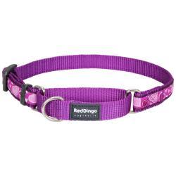 Red Dingo Breezy Love Purple Small Martingale Collar