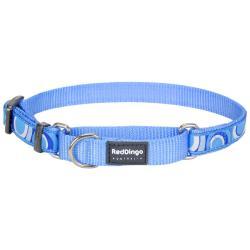 Red Dingo Circadelic Blue Small Martingale Collar