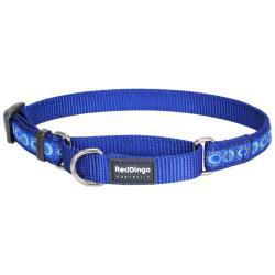 Red Dingo Cosmos Blue Small Martingale Collar
