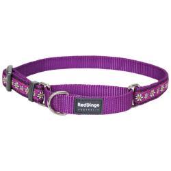 Red Dingo Daisy Chain Purple Small Martingale Collar