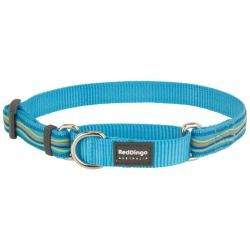 Red Dingo Dreamstream Turquoise Small Martingale Collar