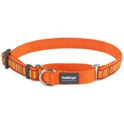 Red Dingo Lotzadotz orange Small Martingale Collar