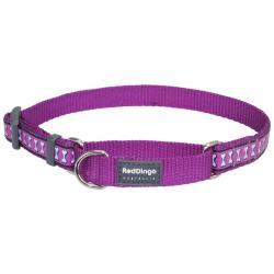 Red Dingo Reflective Purple Small Martingale Collar