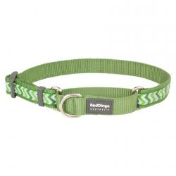Red Dingo Reflective Ziggy Green Small Martingale Collar