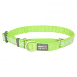 Red Dingo Reflective Ziggy Lime Small Martingale Collar
