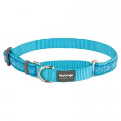 Red Dingo Butterfly Turquoise Medium Martingale Collar