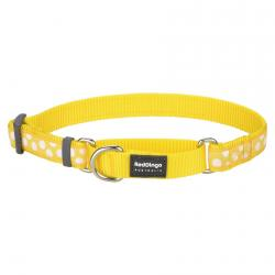 Red Dingo White Spots Yellow Medium Martingale Collar