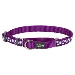 Red Dingo White Spots Purple Large Martingale Collar