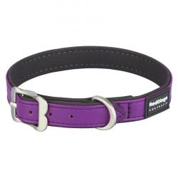 Red Dingo Elegant Purple Small Collare / 24-30 cm