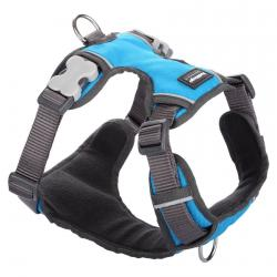 Red Dingo Padded dog harness Large Turquoise