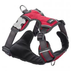 Red Dingo Padded dog harness Large Red