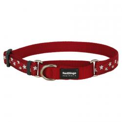 Red Dingo Stars Red Large Martingale Collar