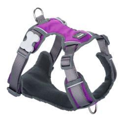 Red Dingo Harnais rembourré pour chien Large Purple