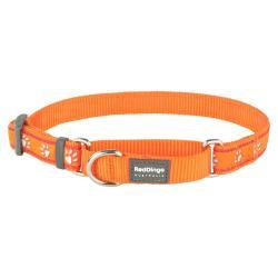 Red Dingo Desert Paws Orange Medium Martingale Collar