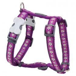 Red Dingo Daisy Chain Purple Medium Dog Harness