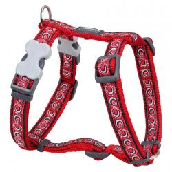 Red Dingo Cosmos Red Large Dog Harness