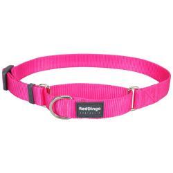 Red Dingo Hot Pink Medium Martingale Collar