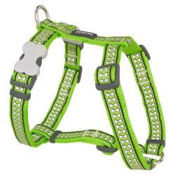 Red Dingo Reflective Lime Medium Dog Harness