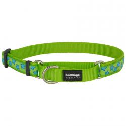 Red Dingo Stars Lime Large Martingale Collar