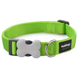 Red Dingo Lime XS Dog Collar