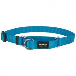 Red Dingo Turquoise Large Martingale Collar