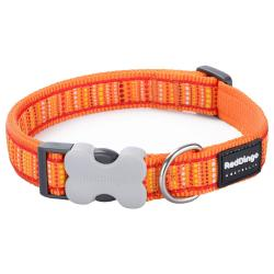 Red Dingo Lotzadotz orange Medium Dog Collar